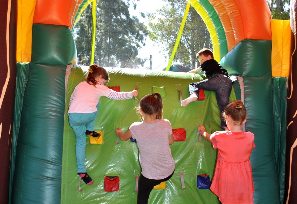 Jungle Run Inflatable Ride for hire Sydney- Carnival Rides Sydney