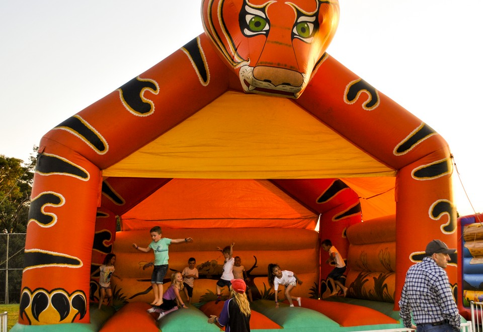 Tiger Jumping Castle for Hire - Carnival Rides Sydney
